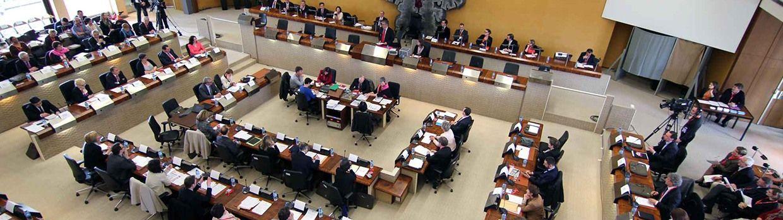 Bandeau de la page 'Conseillers départementaux, députés et sénateurs