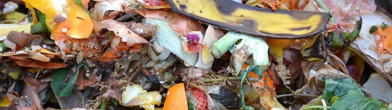 Bandeau de la page 'Les déchets verts : broyage et compost